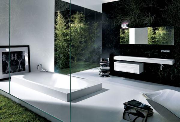 minimalistinė vonia