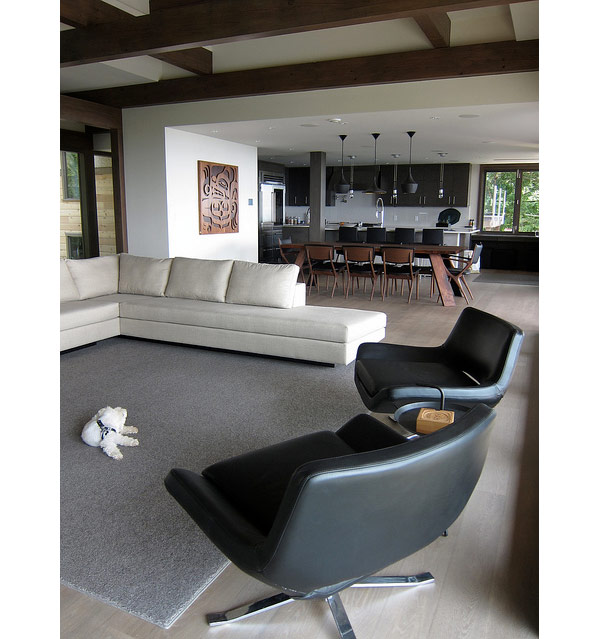 svetainės, valgomojo, virtuvės bendra erdvė namo interjere