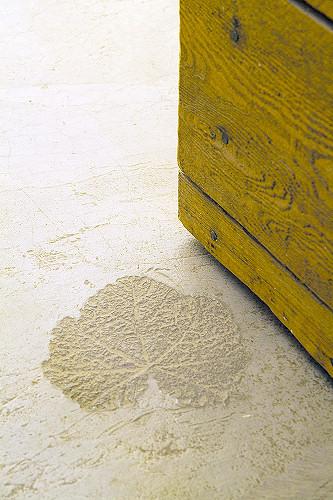 betono grindų dizainas