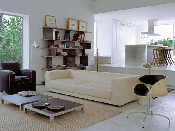 svetainės, virtuvės atvira bendra erdvė