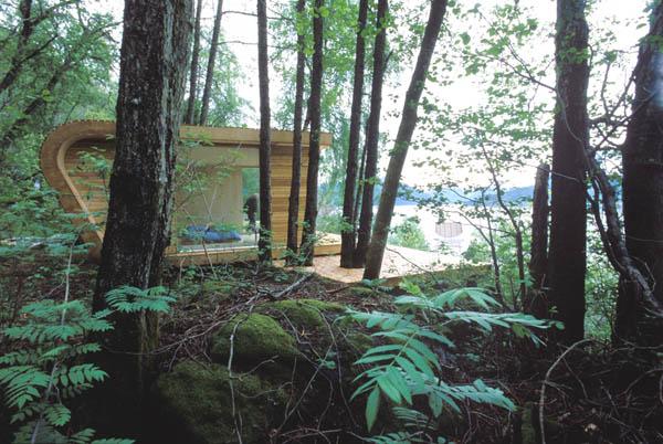 Vasarnamis ar sodo namelis miške prie jūros Norvegijoje