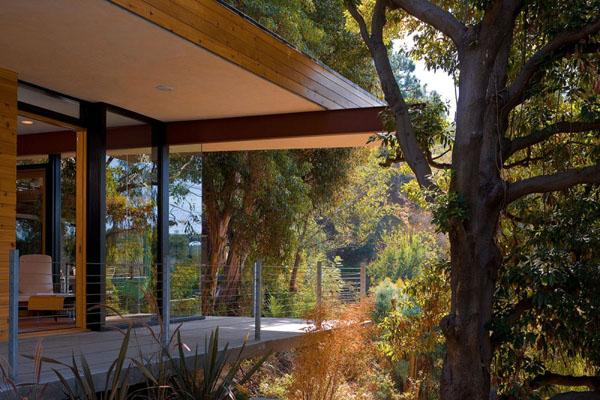 lauko terasa, medžiai