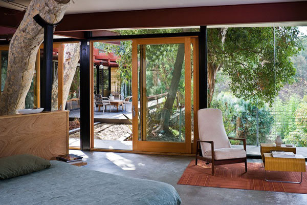 medžio kamienas, lova, fotelis, stiklas kambario interjere