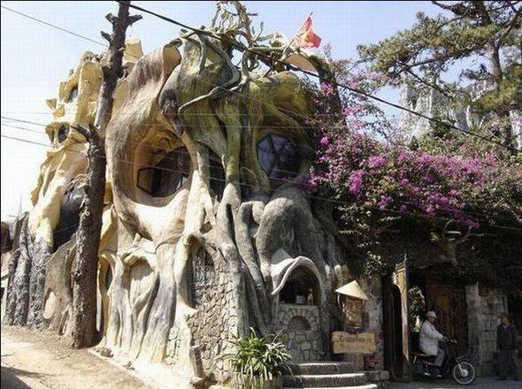 organiniu formu namas vietname