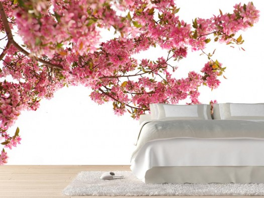 floral-wall-mural-cherry-blossom-in-spring-sweet-wall-improvement-with-new-concept-wall-murals-from-eazywallz-525x393