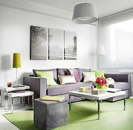 40 m2 buto svetainė, pilka sofa, žalias kilimas