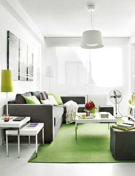 40 m2 buto svetainė, pilka sofa