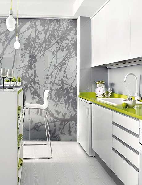 40 m2 buto virtuvė, augaliniais motyvais dekoruota stiklinė pertvara