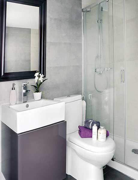 40 m2 buto vonia, tualetas, klozetas, veidrodis