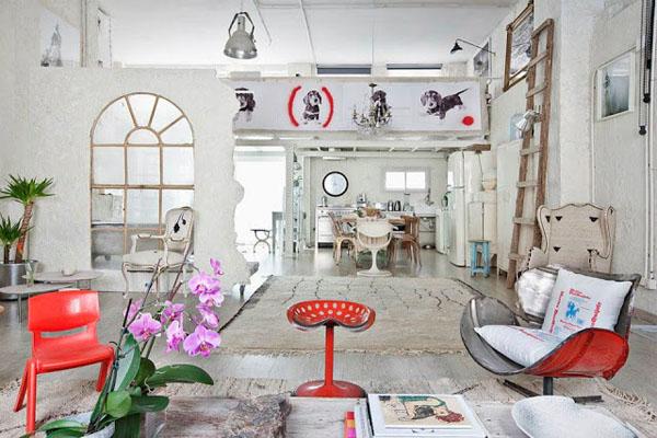 balta fotografijos studija namai, raudonos kėdės, šunų piešiniai