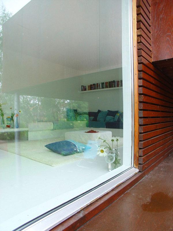 24 m2 namas fasadas, stiklas, medis