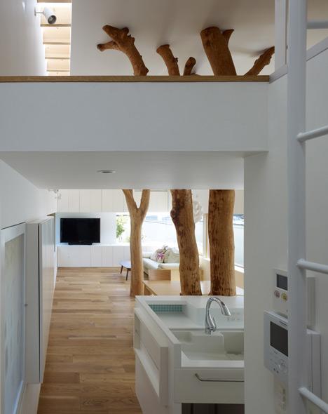namo priestatas, medžiai erdvėje, lubose stoglangių juosta