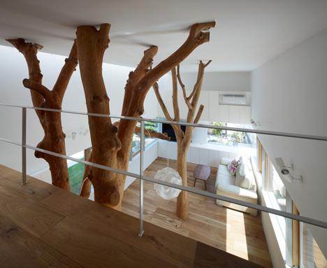 namo priestatas, medžiai bendroje erdvėje