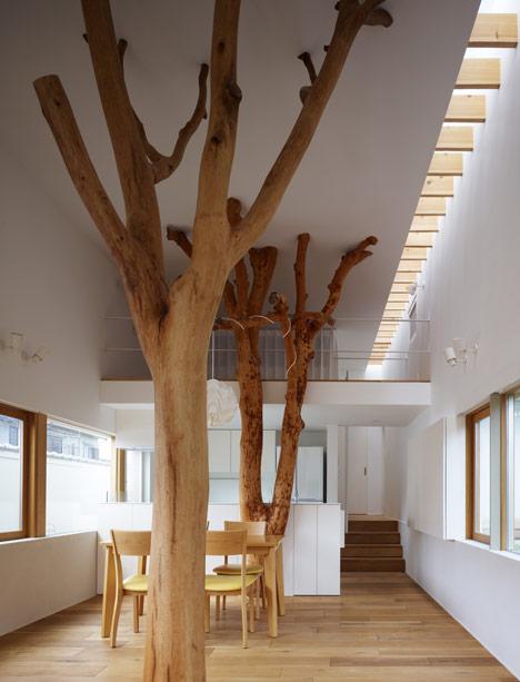 namo priestatas, du medžiai erdvėje