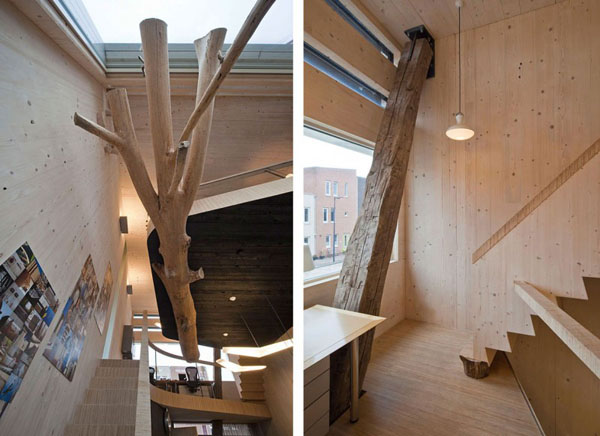 medis su sakomis is viršaus, pasyvus namas