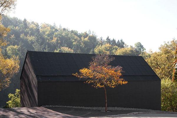juodas namo fasadas, medis
