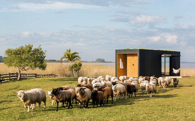 MINI-MOD surenkamas namas fasadas avys