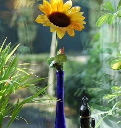 langas gele vaza